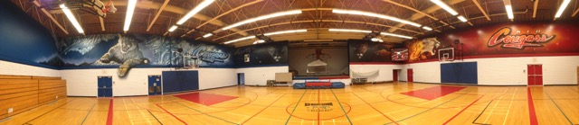 New Gym Mural!!